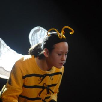 Cirque 2008